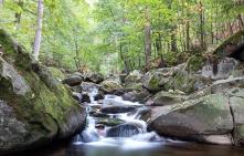 Sirona Selbstheilung und Selbsthilfe, Wasser läuft an Steinen herunter